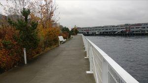Mesmerizing View - Seattle