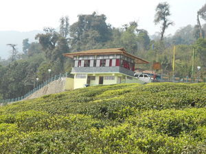 Go South &West Sikkim 4a retreat in the midst of nature in its most natural form