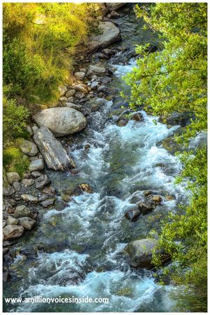 All about the trip- Old Manali