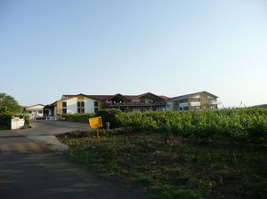 Sula Vineyards 1/undefined by Tripoto