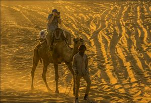 Pushkar Camel Fair: Part 2 - The Photo Story