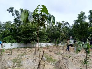 Weekend Plantation at Govt School, Gunjur Palya, Bangalore