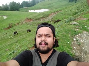 Cows ain't bothered about the selfie ,they busy grazing #SelfieWithAView #TripotoCommunity