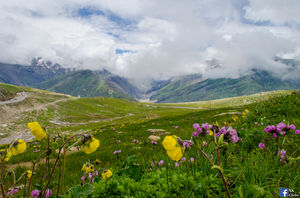 Rothang Pass: Gateway to Heaven on Earth