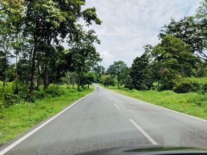 Coorginess of Coorg- like never before- 3 day Itinerary from Bangalore