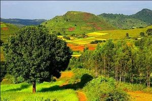 Tunnels & bridges, emerald hills & tribal culture - Araku