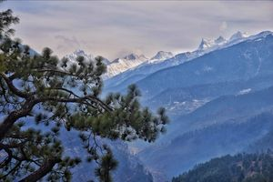 A call of the mountains - Kedarkantha Trek