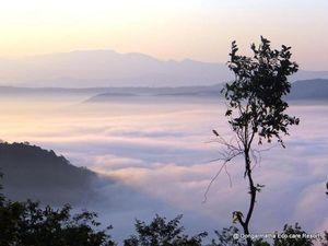 Dongarmatha – the eco care resort.