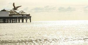Brighton Pier 1/undefined by Tripoto