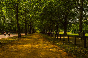 Hyde Park 1/undefined by Tripoto