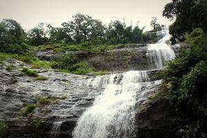 Kerala Diaries - Exploring Munnar