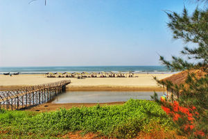 From Parties to Tranquillity… North Goa!