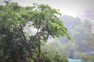 Things to do this monsoon- beyond Lonavala!