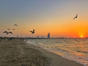 Dubai: All Things Touristy!