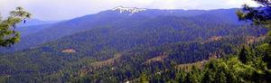 Kuppar Peak 1/1 by Tripoto