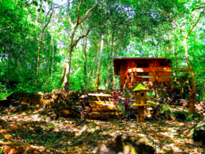 This Secluded Cabin In The Woods In Goa Is Perfect For Those Seeking A Romantic Getaway