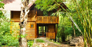 This Bamboo House Amidst Lush Green Landscapes Will Make You Wanna Spend An Eternity There