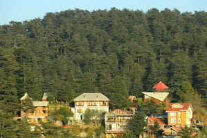 Hidden In The Dense Deodar Forests, In The Lap Of Himalayas Lies Your Next Luxury Getaway