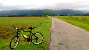 Why you should cycle through rural Assam this monsoons