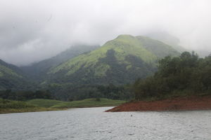 Why Wayanad is called a Green Paradise: Let's explore it from here!