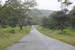 Bandipur National Park and Tiger Reserve 1/undefined by Tripoto