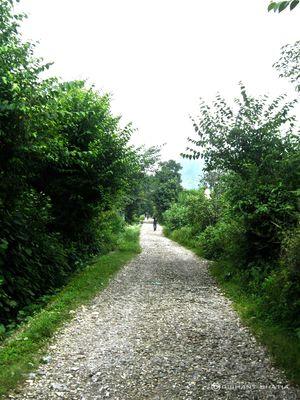 Devi Pindian Trek - Photoblog