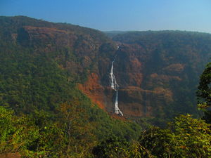 Head to Similipal....for waterfall, mountain, forest and wilderness