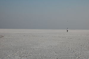 Tips to Travel Kutch- Land of Diversity