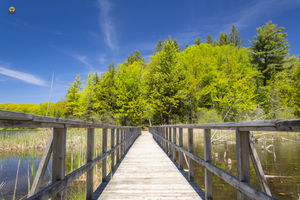 A voyage to Awenda Provincial Park, Ontario - Canada