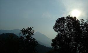 Adrenaline kick: Kerala (Munnar: Thekkady: Alleppey)