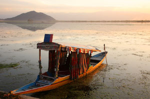 Vacationing in Paradise: Srinagar and Beyond