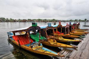 Vacationing in Paradise: Srinagar and Beyond