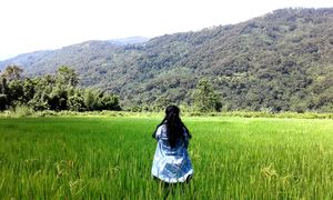 Solo walk in lone hill of Assam- Haflong