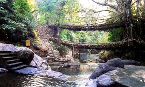 Home To Double Decker Living Root Bridge - Nongriat Village