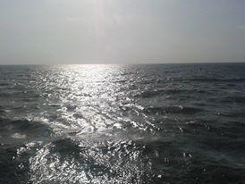 Anjuna Beach 1/31 by Tripoto