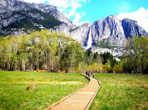 Grandness of Yosemite National Park