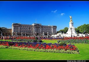 Buckingham Palace 1/undefined by Tripoto