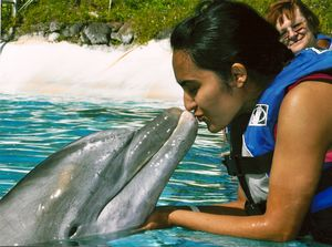 Sea Life Park Hawaii 1/undefined by Tripoto