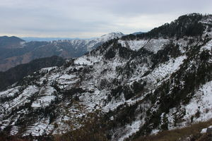 Winter Wonderland near Dhanaulti