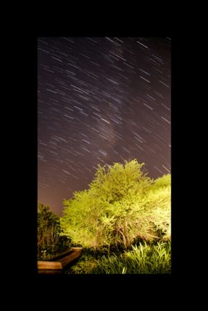 Stars in motion | TIMELAPSE |