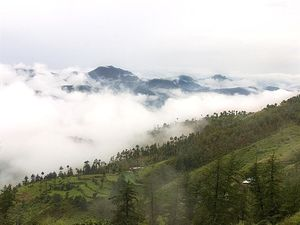 Leave The Crowded Vistas Of Shimla - Head To Quieter And Lovely Mashobra