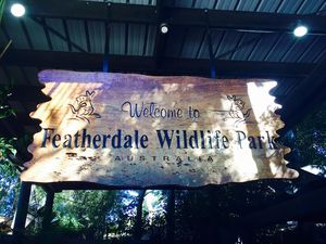 Day Trip To Featherdale Wildlife Park