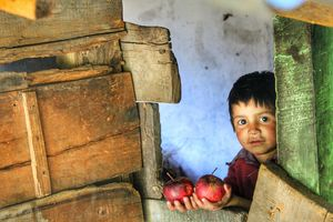 The Li'l Apple Seller.  His red cheeks or the red apples, tough choice...!!!