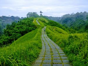 Campuhan Ridge walk - Ubud, Bali. Free activity , priceless experience !
