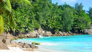 The Creole Tales (Seychelles) – I