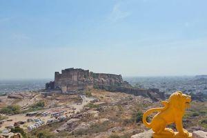 The Blue city 'Jodhpur'#rajasthaninphotos
