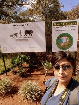Lilayi #Elephant Orphanage Project #SelfieWithAView and #TripotoCommunity