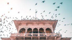 Refined Rajasthani Royalty: Ranakpur x Kumbhalgarh x Udaipur x Jaipur #rajasthaninphotos