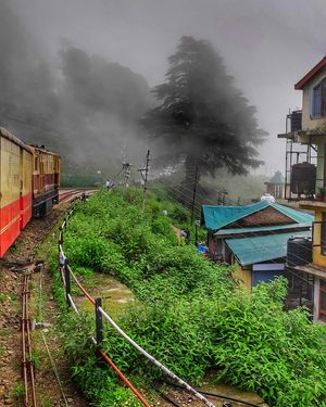 #BestTravelPictures  Riding on a toy train amidst clouds and crossing forests and small villages.  #