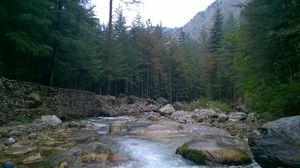 Kasol:The land of peace&wonder